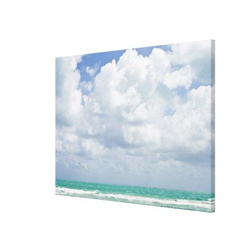 USA, Florida, Miami, Landscape with sea Stretched Canvas Print
