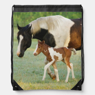 USA, Florida, Newborn Paint filly Drawstring Backpack