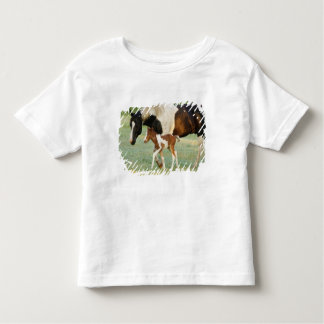 USA, Florida, Newborn Paint filly Toddler T-shirt