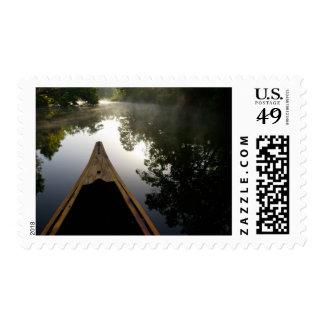 USA, Florida, Ocala National Forest, Alexander Stamp