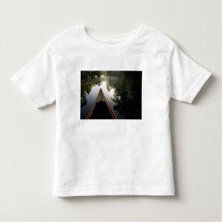 USA, Florida, Ocala National Forest, Alexander Shirts
