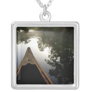 USA, Florida, Ocala National Forest, Alexander Silver Plated Necklace