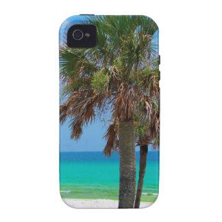 USA, Florida. Palm Trees On Emerald Coast Case-Mate iPhone 4 Covers
