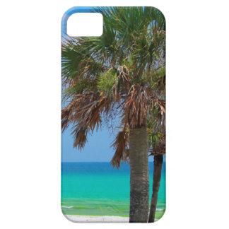 USA, Florida. Palm Trees On Emerald Coast iPhone 5 Case