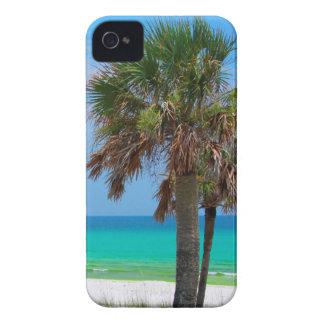 USA, Florida. Palm Trees On Emerald Coast iPhone 4 Case-Mate Cases