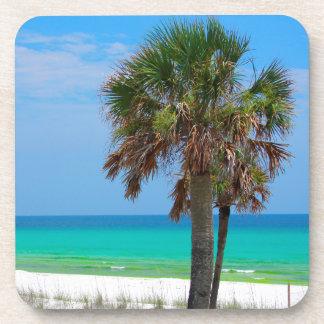 USA, Florida. Palm Trees On Emerald Coast Drink Coaster