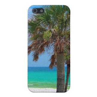 USA, Florida. Palm Trees On Emerald Coast iPhone 5/5S Case