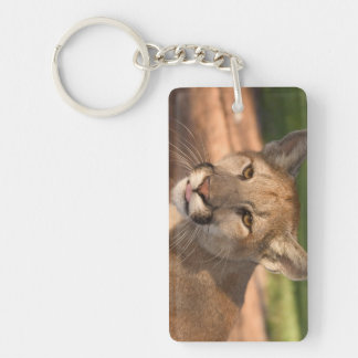 USA, Florida panther (Felis concolor) is also Rectangle Acrylic Key Chain