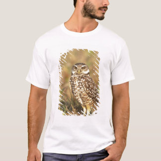 USA, Florida, Pompano Beach. A burrowing owl in T-Shirt