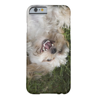 USA, Florida, Ponte Vedra Beach Barely There iPhone 6 Case