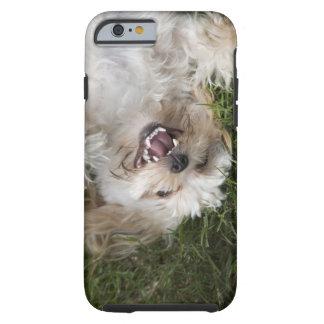 USA, Florida, Ponte Vedra Beach Tough iPhone 6 Case
