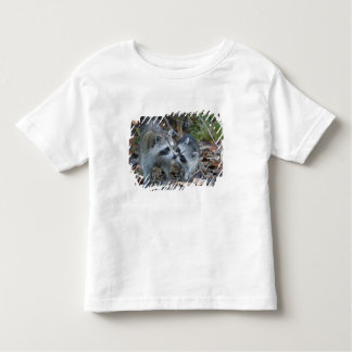 USA, Florida, Sanibel, Ding Darling National T Shirt
