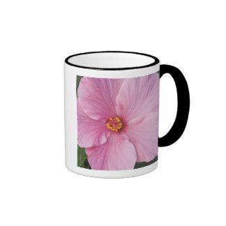 USA, Florida, Sanibel, Hibiscus Rose of Coffee Mug