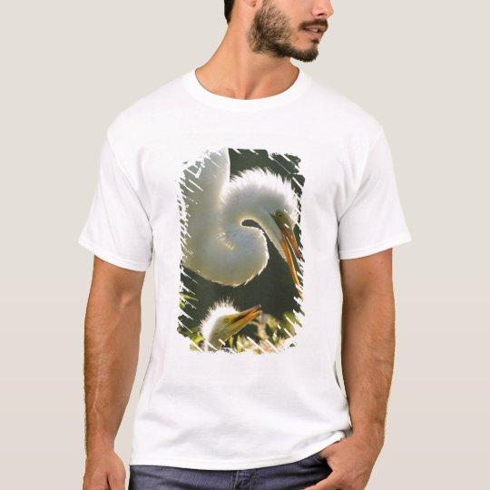 USA, Florida, St. Augustine, Alligator farm T-Shirt