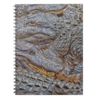 USA, Florida, St. Augustine, Alligators 2 Spiral Notebook