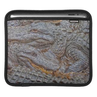 USA, Florida, St. Augustine, Alligators 2 Sleeve For iPads