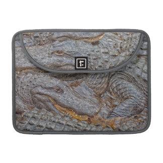 USA, Florida, St. Augustine, Alligators 2 Sleeve For MacBook Pro