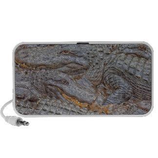 USA, Florida, St. Augustine, Alligators 2 Mp3 Speaker