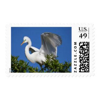 USA, Florida, St. Augustine, Egret Postage Stamps