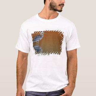 USA, Florida, St. Petersburg, Fort De Soto 2 T-Shirt