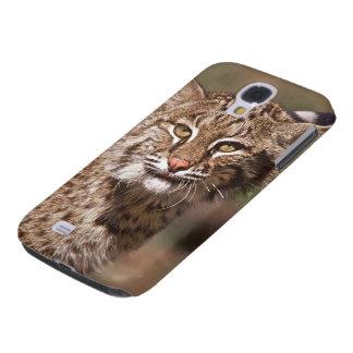 USA, Florida, swamp ecosystem Samsung Galaxy S4 Covers