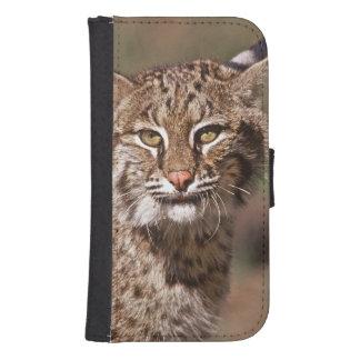 USA, Florida, swamp ecosystem Galaxy S4 Wallet