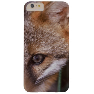 USA, Florida, Swamp Fox Barely There iPhone 6 Plus Case
