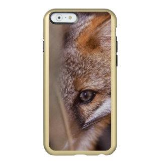 USA, Florida, Swamp Fox Incipio Feather Shine iPhone 6 Case