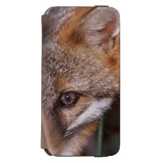 USA, Florida, Swamp Fox iPhone 6/6s Wallet Case
