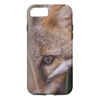 USA, Florida, Swamp Fox iPhone 7 Case