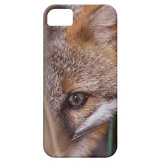 USA, Florida, Swamp Fox iPhone SE/5/5s Case