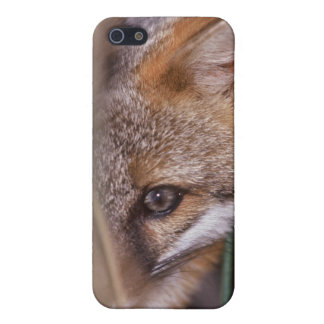 USA, Florida, Swamp Fox iPhone SE/5/5s Cover