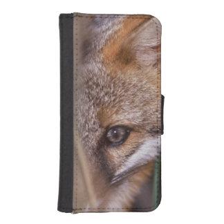 USA, Florida, Swamp Fox iPhone SE/5/5s Wallet Case