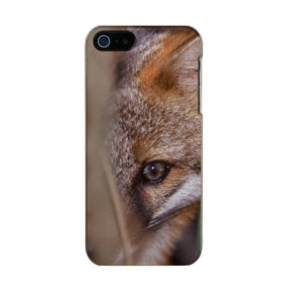 USA, Florida, Swamp Fox Metallic Phone Case For iPhone SE/5/5s