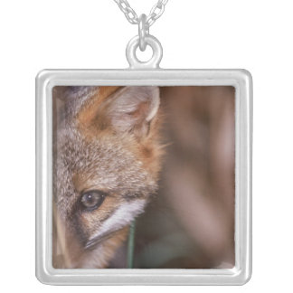 USA, Florida, Swamp Fox Silver Plated Necklace