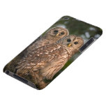USA, Florida, Viera Wetlands. Three barred Case-Mate iPod Touch Case