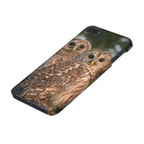 USA, Florida, Viera Wetlands. Three barred iPod Touch 5G Cover