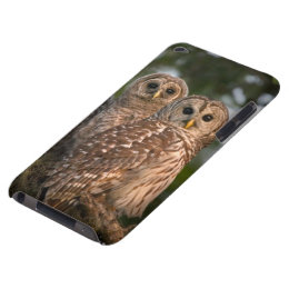 USA, Florida, Viera Wetlands. Three barred iPod Touch Cover