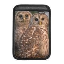 USA, Florida, Viera Wetlands. Three barred Sleeve For iPad Mini