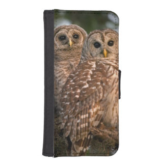USA, Florida, Viera Wetlands. Three barred Wallet Phone Case For iPhone SE/5/5s