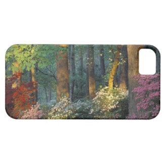 USA, Georgia, Callaway Gardens, Azalea forest. iPhone SE/5/5s Case