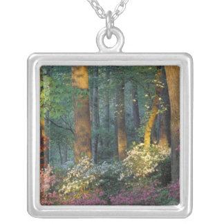 USA, Georgia, Callaway Gardens, Azalea forest. Square Pendant Necklace