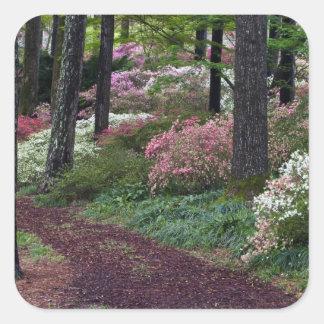 USA, Georgia, Callaway Gardens. Pathway Square Sticker
