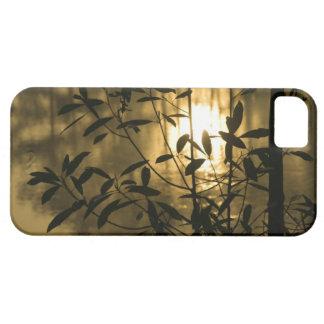 USA, Georgia, Callaway Gardens, Sunrise iPhone 5 Cover
