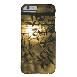 USA, Georgia, Callaway Gardens, Sunrise Barely There iPhone 6 Case