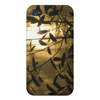 USA, Georgia, Callaway Gardens, Sunrise iPhone 4/4S Cover