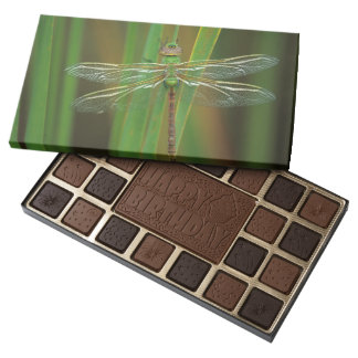 USA, Georgia. Green darner dragonfly on reeds Assorted Chocolates