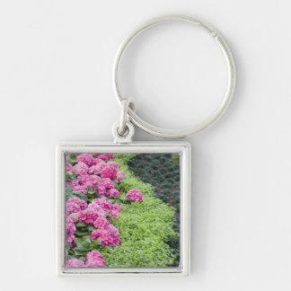 USA, Georgia, Pine Mountain. A boder of spring Keychain