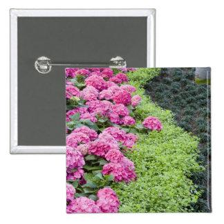 USA, Georgia, Pine Mountain. A boder of spring Pinback Button
