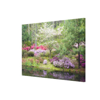 USA, Georgia, Pine Mountain. A mixture of Canvas Print